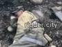 Видео с обессиленными пожарными из Риддера растрогало восточноказахстанцев