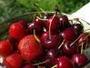Санврачи рассказали, откуда в Усть-Каменогорск везут черешню и клубнику